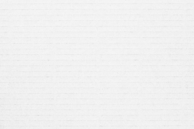 White paper line canvas texture background