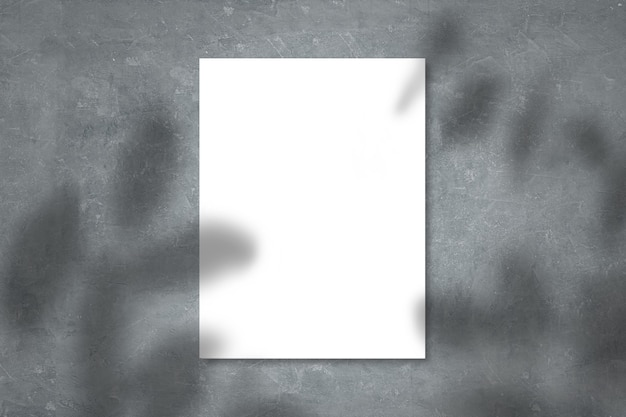 現実的な影でコンクリートの壁に表示された白い紙のモックアップは、ベージュの背景、プロモーションマーケティングのバナー、美的創造的なデザインの背景に葉をオーバーレイします