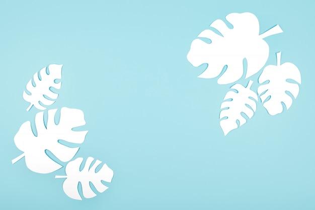 White paper monstera leaves on blue