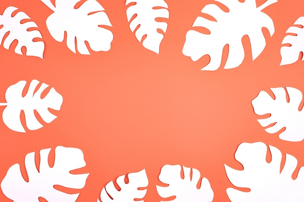 White paper monstera leaves on coral background