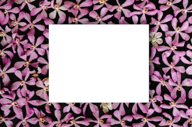 White paper on pink orchid flowers
