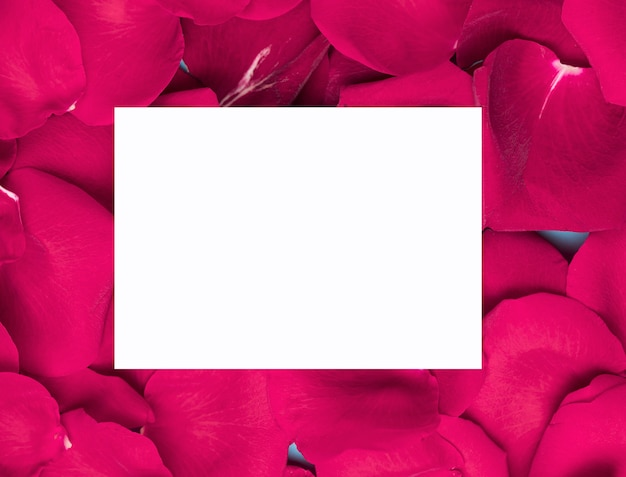 White paper on purple flower petals copy space