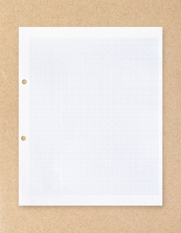 White paper sheet with grid line pattern.