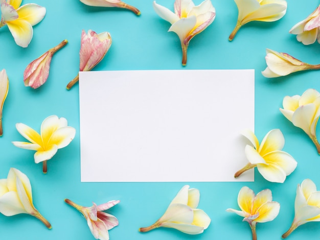 White paper surrounded with plumeria or frangipani flower on blue background.