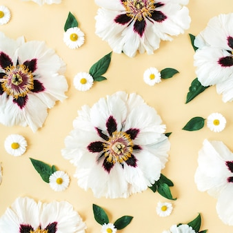노란색에 흰 모란과 카모마일 꽃 패턴