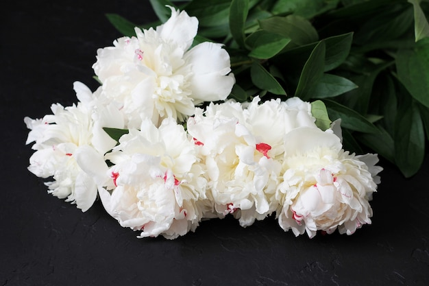 White peonies on dark