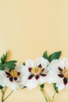 노란색에 흰 모란 꽃