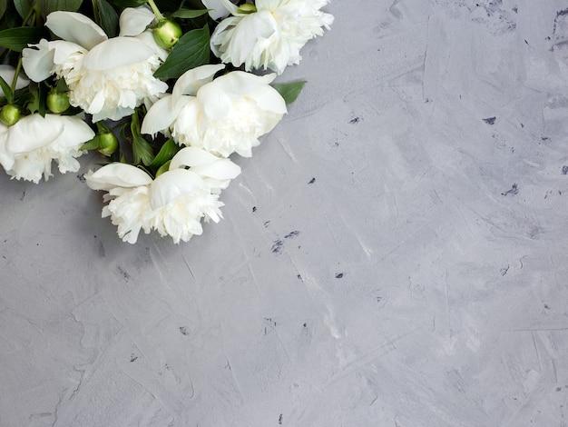회색 돌 배경에 흰색 모란, 텍스트 평면도 및 평면 평신도 스타일 복사 공간.