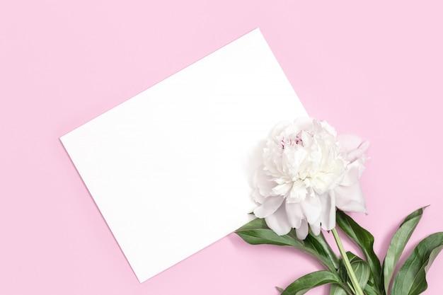 편지와 분홍색 표면에 흰 모란 꽃