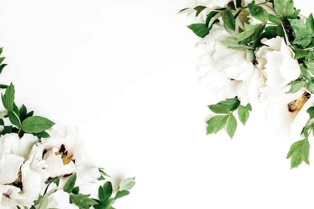 白い背景に白い牡丹の花。フラットレイ、トップビュー