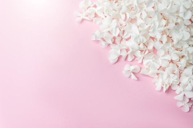 분홍색 배경에 흰색 꽃잎이 있고 텍스트를 위한 공간이 복사됩니다. 꽃 인사말 카드입니다. 결혼식 초대장