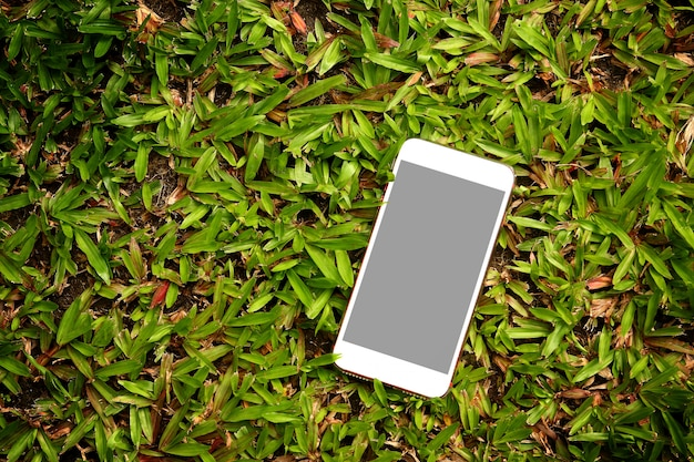 White phone placed on green grass.