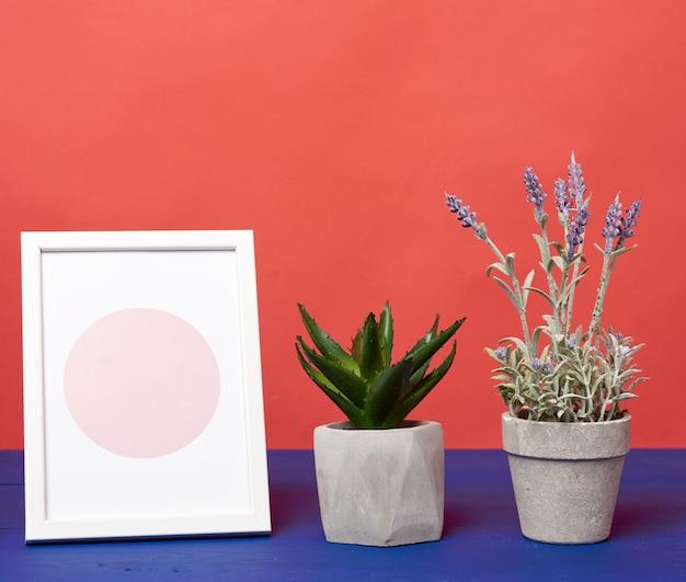 푸른 나무 테이블에 성장 식물 화이트 포토 프레임 및 세라믹 냄비