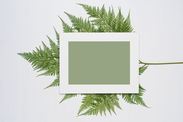 White photo frame and green leaves on a white wooden background