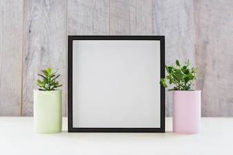 White picture frame between the two plants in the recycle containers