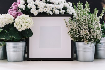 White picture frame surrounded with potted beautiful flowers