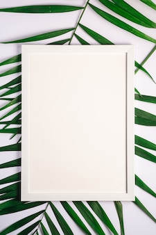 White picture frame with empty template on palm leaves, white background