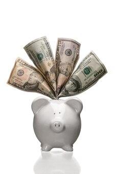 ドルの白い貯金箱-孤立