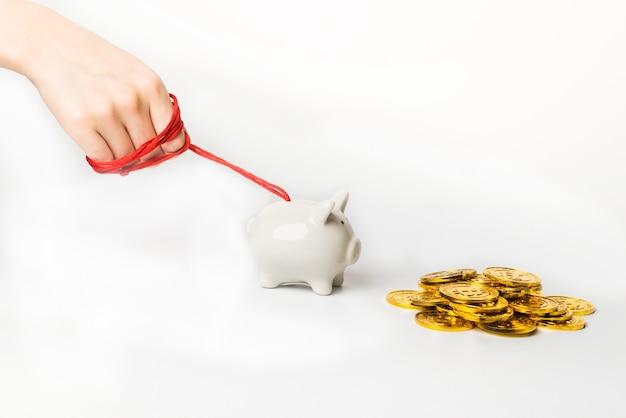 コインホワイト貯金箱