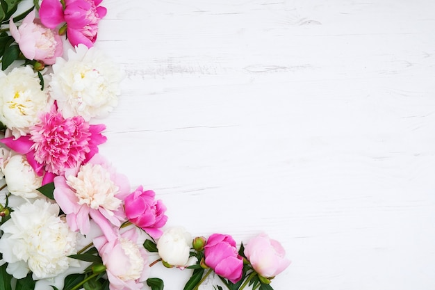 White and pink peonies border on white wooden background. copy space, top view. mothers day, valentines day, birthday concept. greeting card.