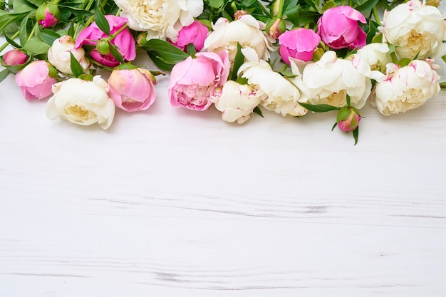 White and pink peonies border on white wooden background. holiday background, copy space, top view. mothers day, valentines day, birthday concept.