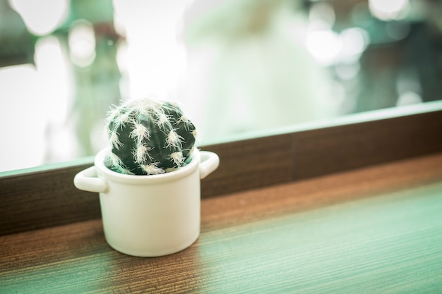 A white pitcher of cactus on wood table