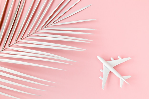 White plane model next to a palm leaf on pink background