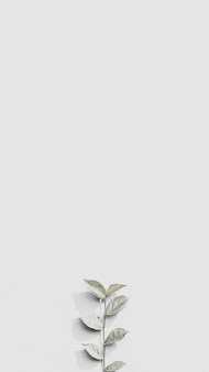 White plant branch on a gray brick wall in natural light background mobile wallpaper
