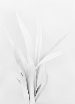 3d 렌더링 디자인에 흰색 식물