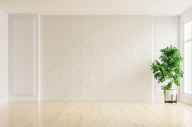 White plaster wall empty room with plants on a floor,3d rendering