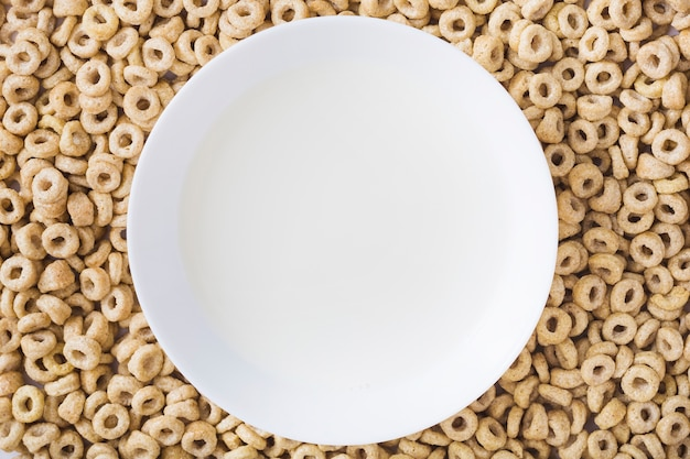 A white plate over the healthy corn cereals