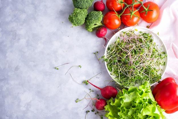 新鮮なマイクログリーンが入った白いプレートは、赤ピーマン、赤大根、ブロッコリー、グリーンサラダ、トマトが入った白いプレートの上にあります。