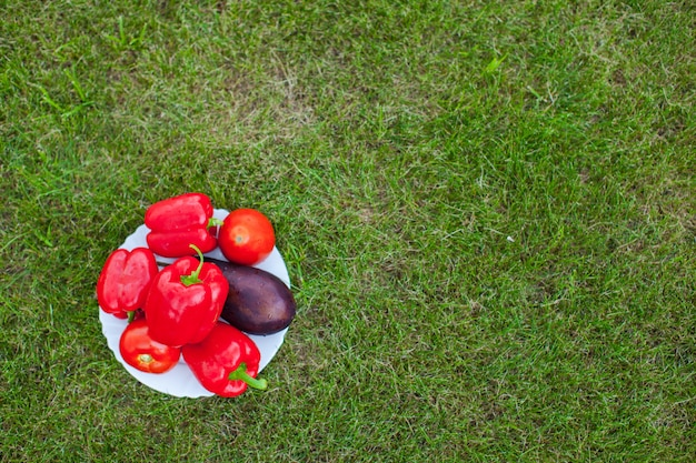 White plate with red peppers on a green grass
