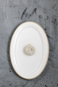 White plate with snail on grey concrete background. copy space.