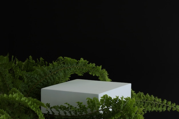 White podium on the black background with tropical leaves. podest for product, cosmetic presentation. creative mock up. pedestal or platform for beauty products.