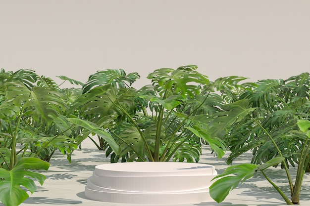 White podium geometric shape on monstera deliciosa natural garden for display of products