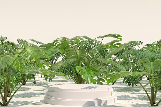 Monstera deliciosa自然庭園の製品の表示用の白い表彰台の幾何学的形状