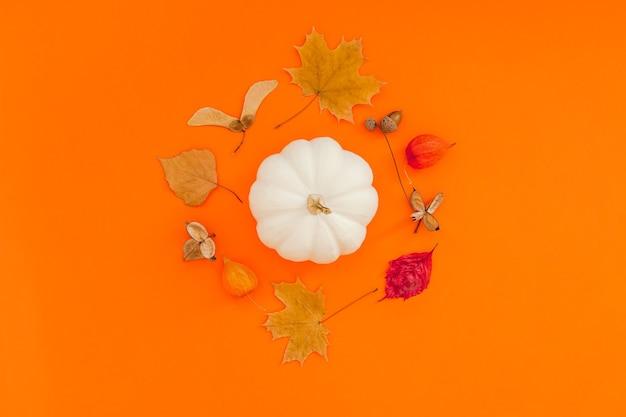 白いカボチャとオレンジ色の背景に乾燥した葉