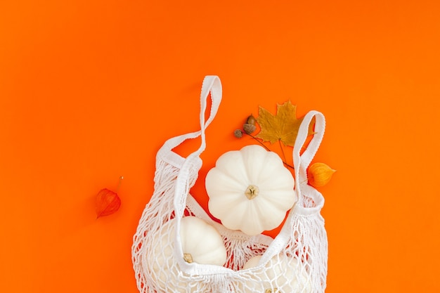 White pumpkins in mesh shopping bag on bold color background