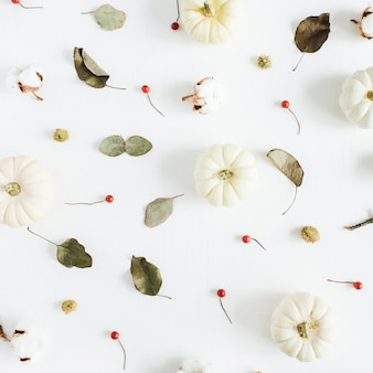White pumpkins, red berries and eucalyptus branches. fall autumn minimal concept. flat lay, top view