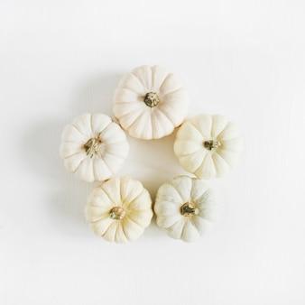 白いかぼちゃ。秋の丸いミニマルアレンジ。フラットレイ、トップビュー