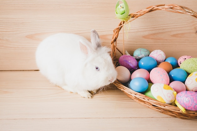 White rabbit near basket with colored eggs