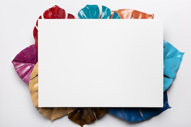 Белый прямоугольник с разноцветными листьями под
