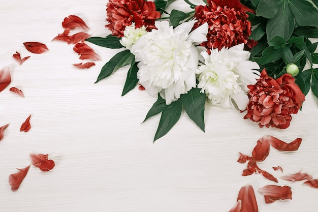 White and red peonies with fallen petals on white wood