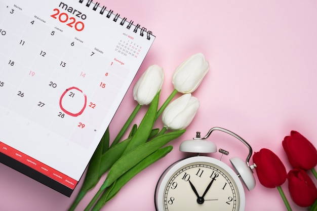 White and red tulips beside calendar and clock