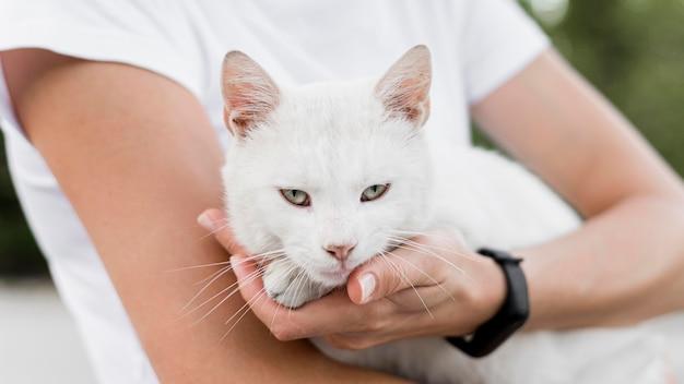 養子縁組の避難所で女性によって保持されている白い救助猫