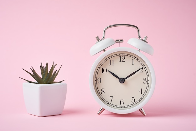 White retro alarm clock and house plant on pink background