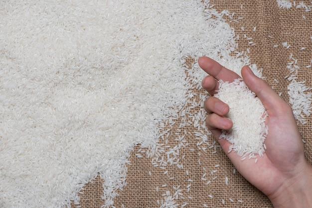 White rice. jasmine rice, thai rice, raw rice.