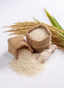 흰색 표면에 흰 쌀