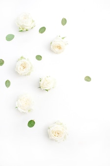 Бутоны белых роз на белом фоне. жир лежал, вид сверху